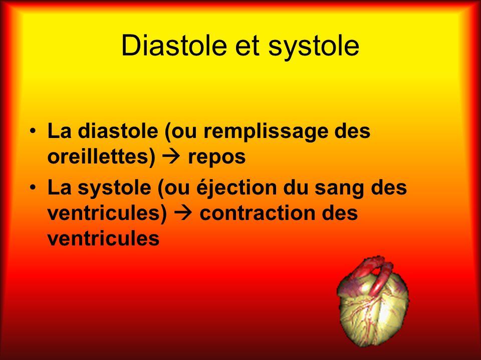 Diastole et systole La diastole (ou remplissage des oreillettes)  repos.