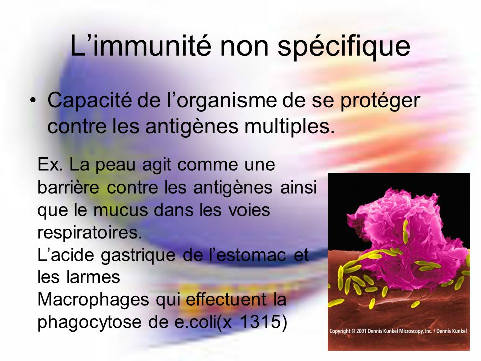 L'immunité non spécifique