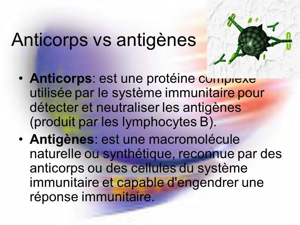 Anticorps vs antigènes