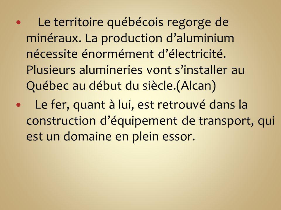 Le territoire québécois regorge de minéraux
