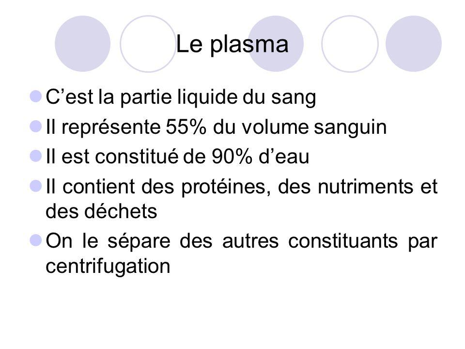 Le plasma C'est la partie liquide du sang