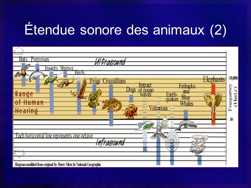 Étendue sonore des animaux (2)