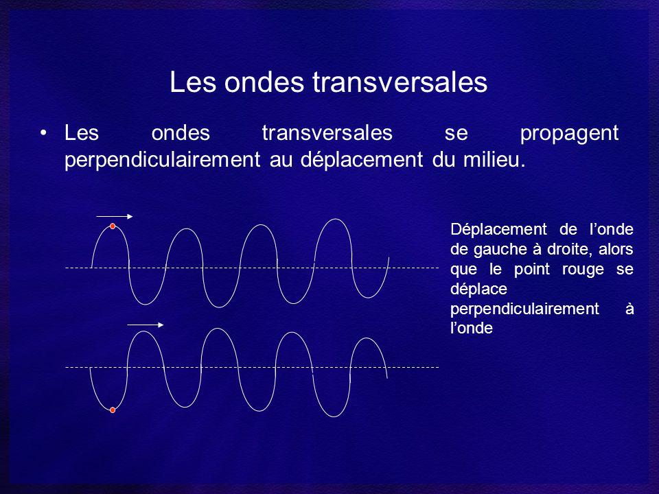 Les ondes transversales