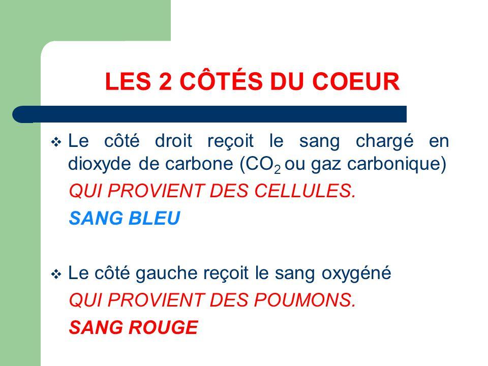 LES 2 CÔTÉS DU COEUR Le côté droit reçoit le sang chargé en dioxyde de carbone (CO2 ou gaz carbonique)