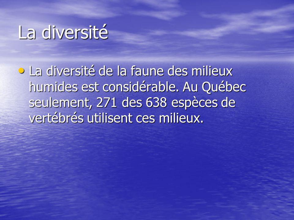 La diversité