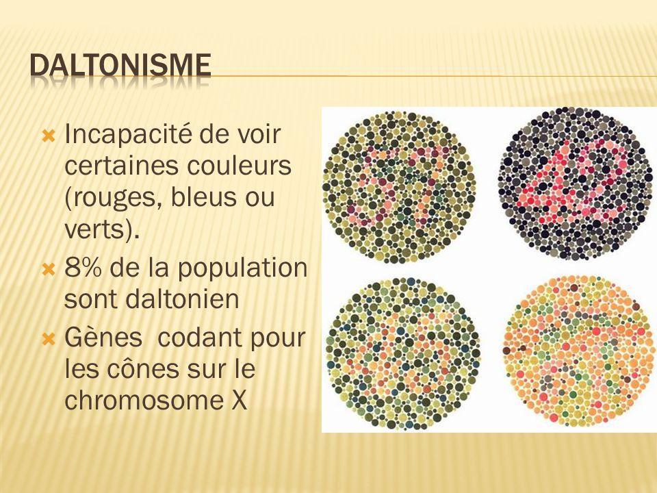 Daltonisme Incapacité de voir certaines couleurs (rouges, bleus ou verts). 8% de la population sont daltonien.
