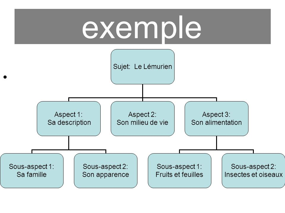 exemple Sujet: Le Lémurien Aspect 1: Sa description Aspect 2: