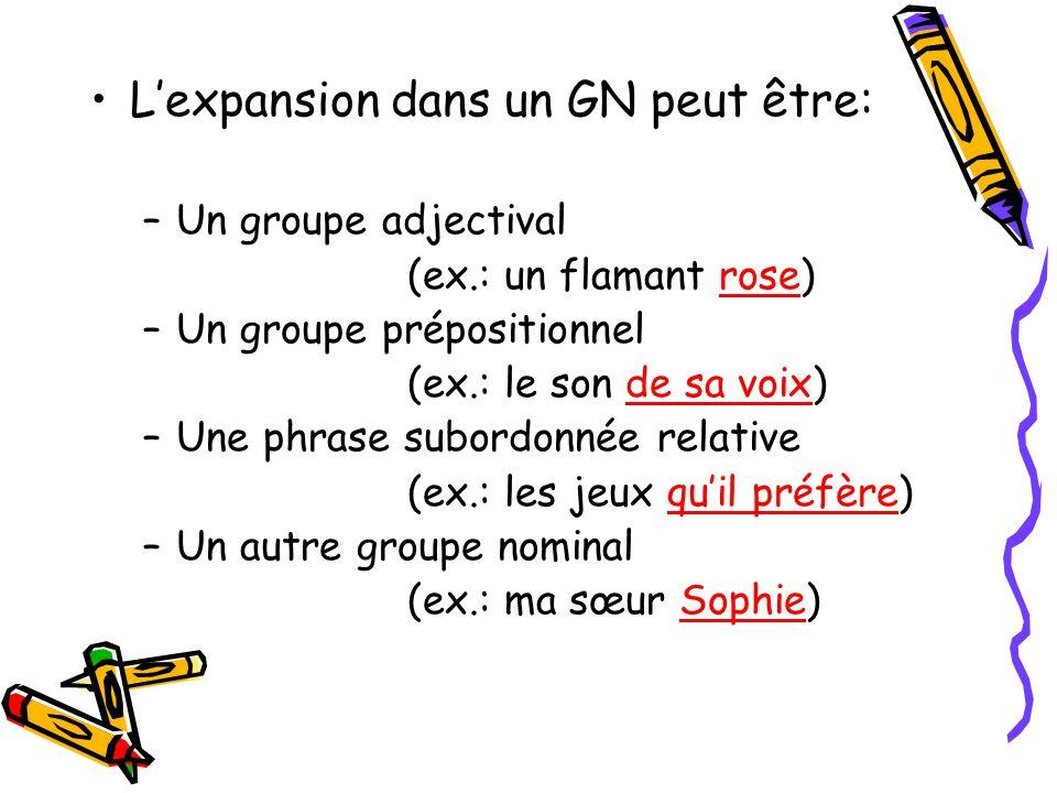 L'expansion dans un GN peut être: