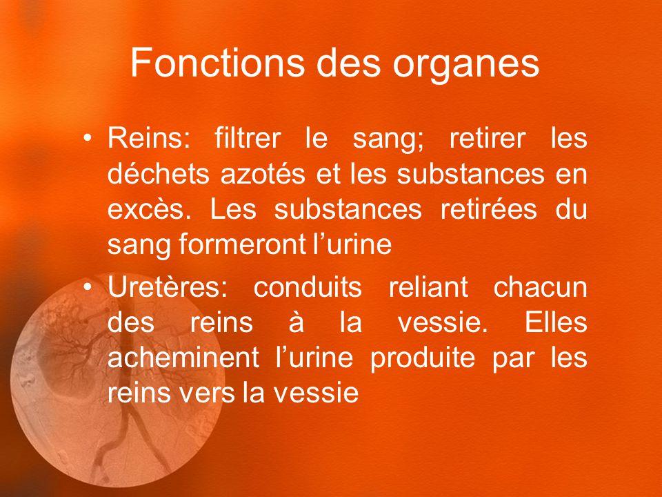 Fonctions des organes