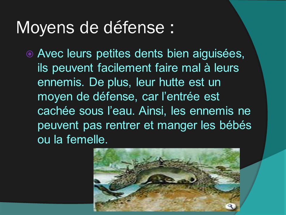 Moyens de défense :