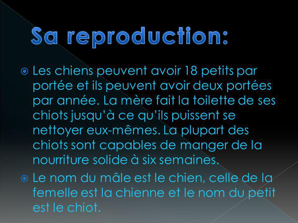 Sa reproduction: