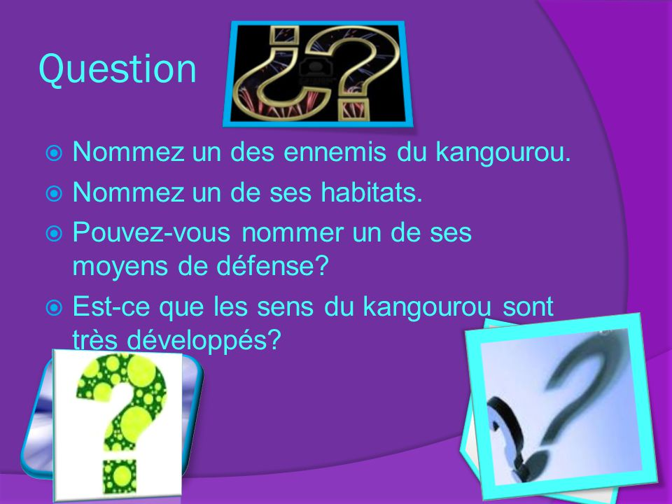 Question Nommez un des ennemis du kangourou.