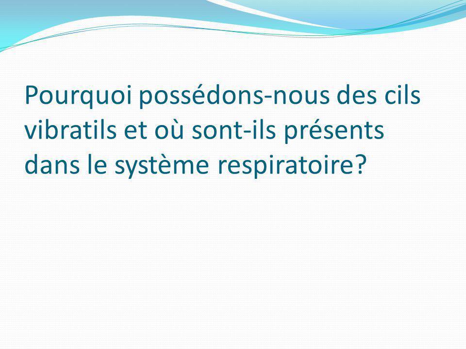Pourquoi possédons-nous des cils vibratils et où sont-ils présents dans le système respiratoire