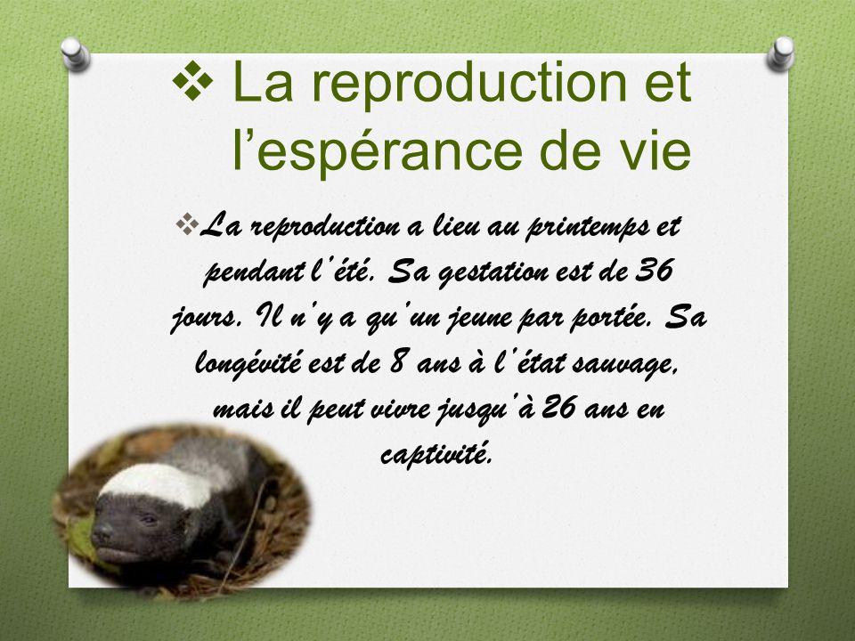 La reproduction et l'espérance de vie