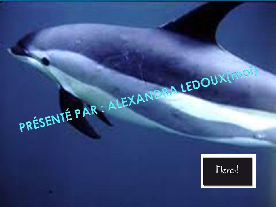 PRÉSENTÉ PAR : ALEXANDRA LEDOUX(moi)