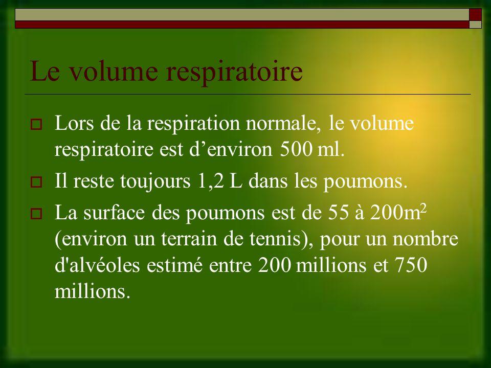 Le volume respiratoire