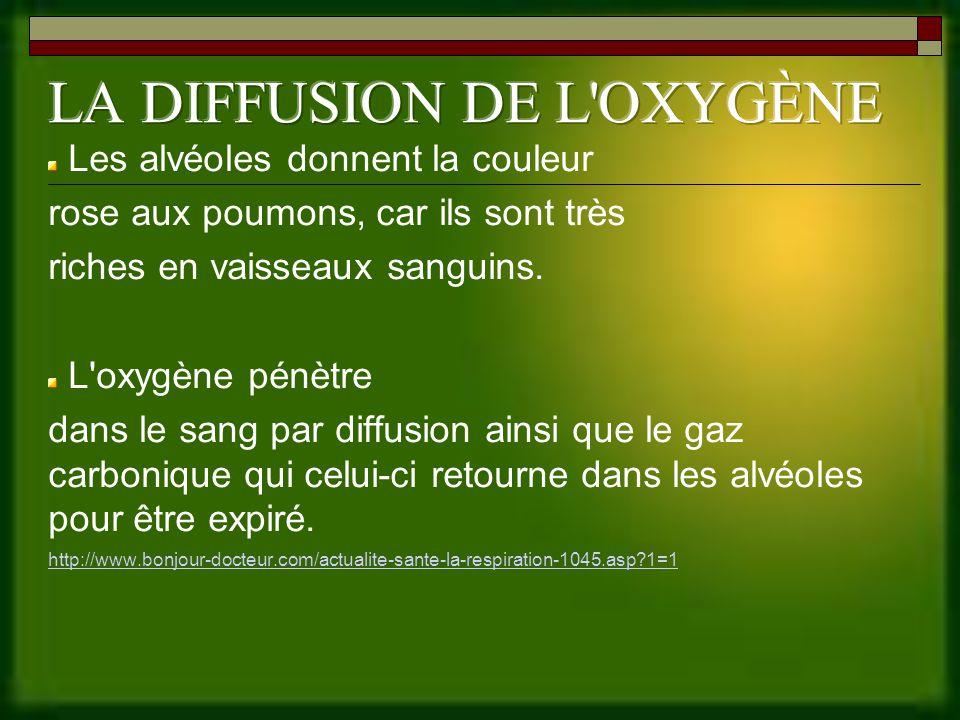 LA DIFFUSION DE L OXYGÈNE