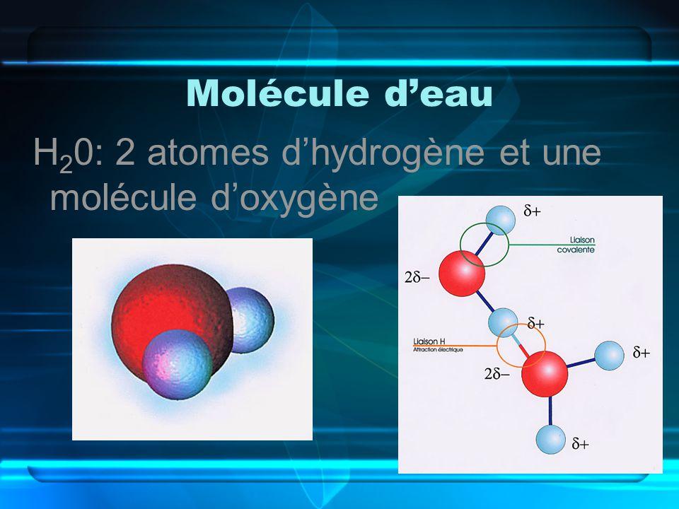 Molécule d'eau H20: 2 atomes d'hydrogène et une molécule d'oxygène