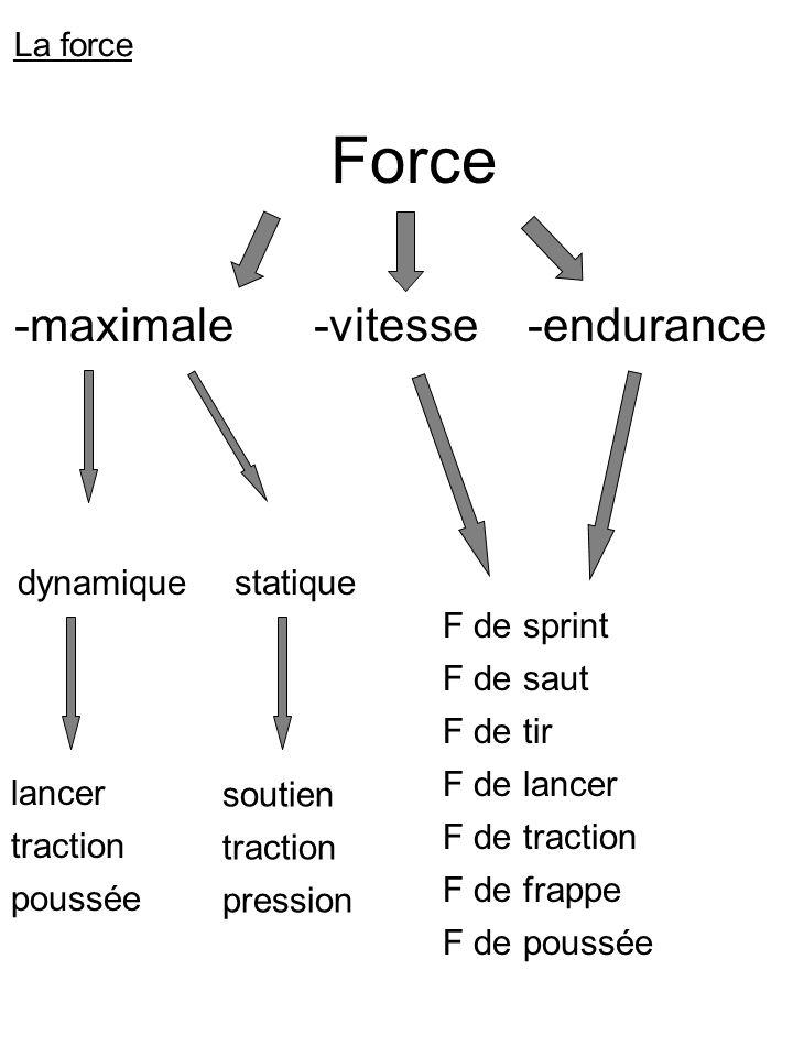 Force -maximale -vitesse -endurance dynamique statique lancer traction