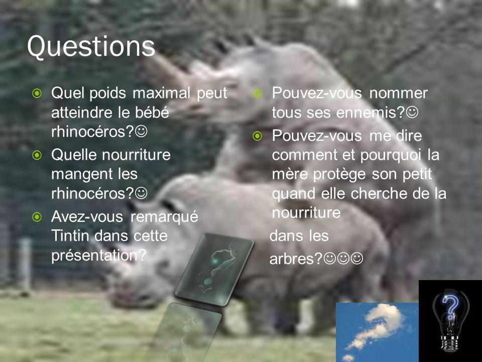 Questions Quel poids maximal peut atteindre le bébé rhinocéros 