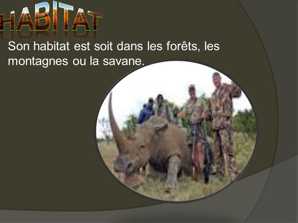 habitat Son habitat est soit dans les forêts, les montagnes ou la savane.