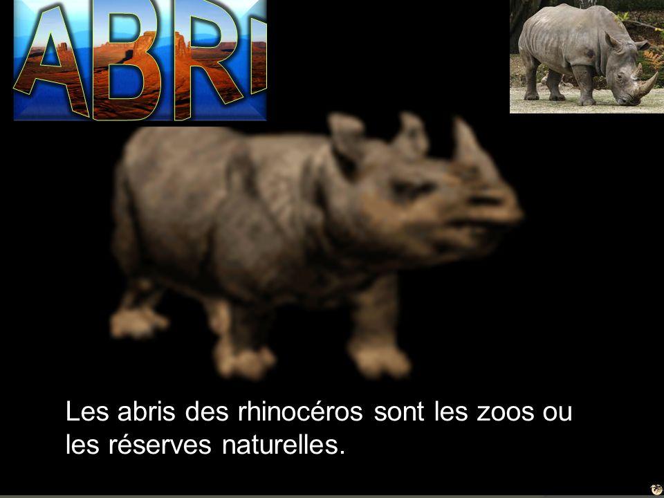 ABRI Les abris des rhinocéros sont les zoos ou les réserves naturelles.