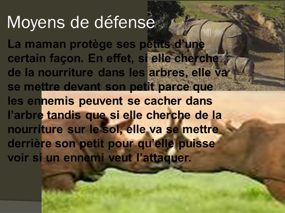 Moyens de défense