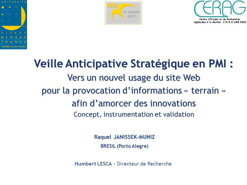 Veille Anticipative Stratégique en PMI : Raquel JANISSEK-MUNIZ