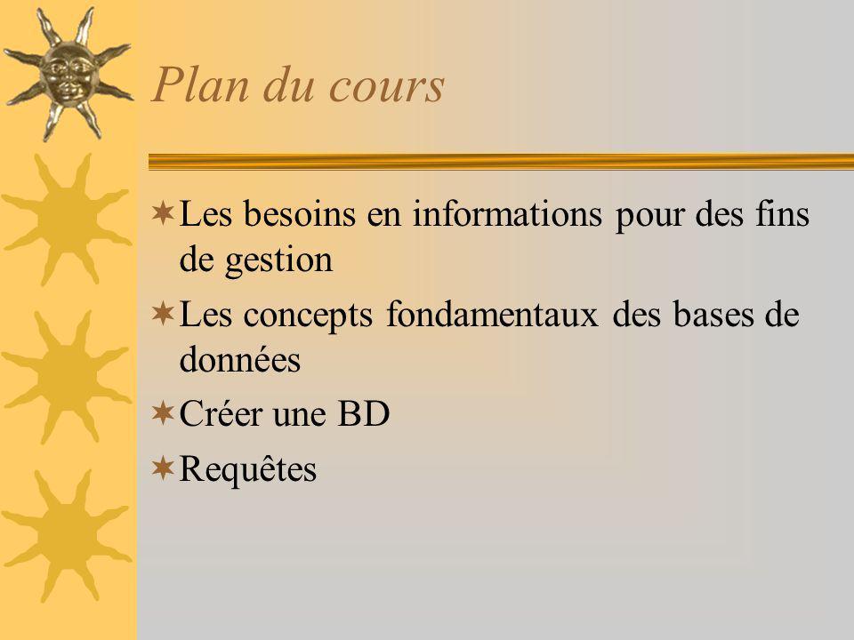 Plan du cours Les besoins en informations pour des fins de gestion