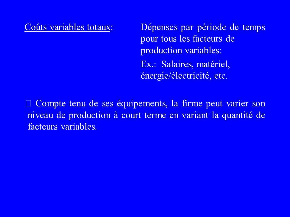 Ex.: Salaires, matériel, énergie/électricité, etc.