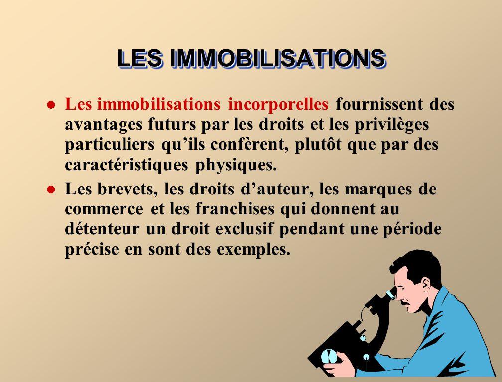 LES IMMOBILISATIONS