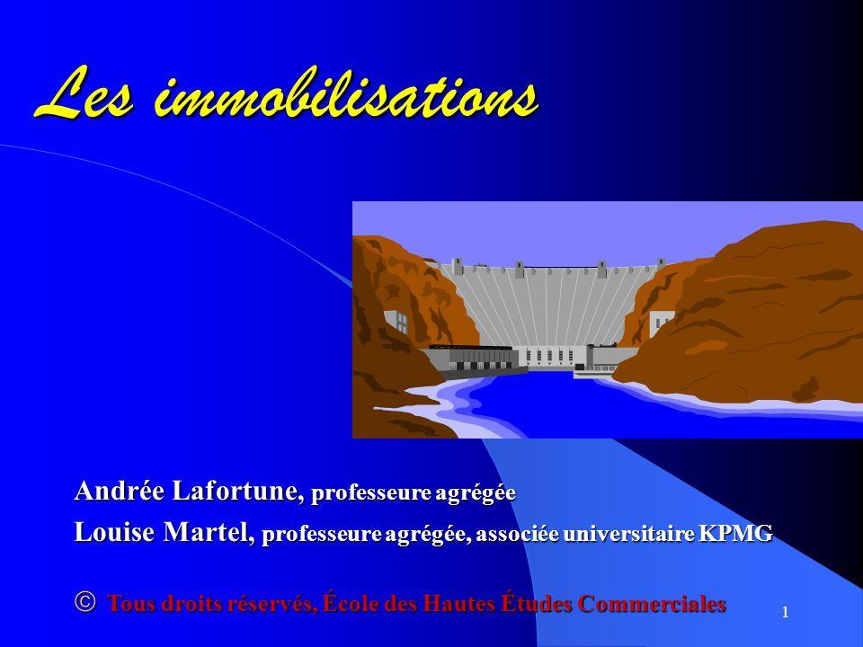 Les immobilisations Andrée Lafortune, professeure agrégée