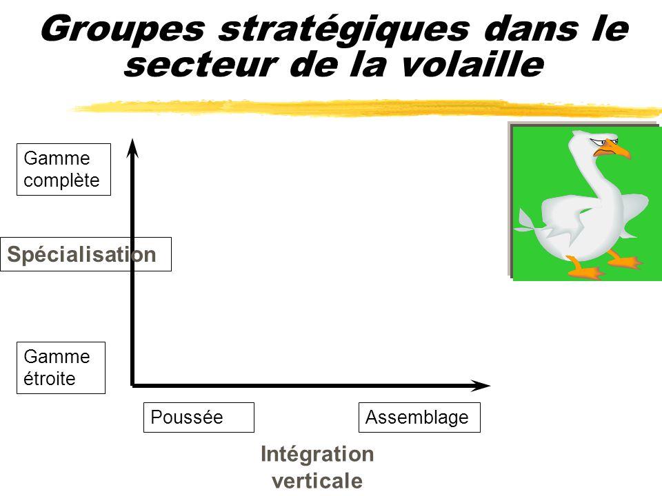Groupes stratégiques dans le secteur de la volaille
