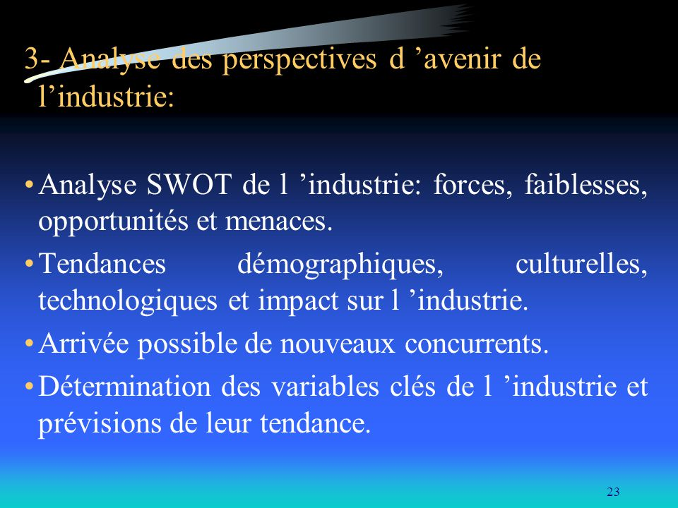 3- Analyse des perspectives d 'avenir de l'industrie: