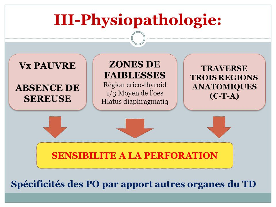 III-Physiopathologie: