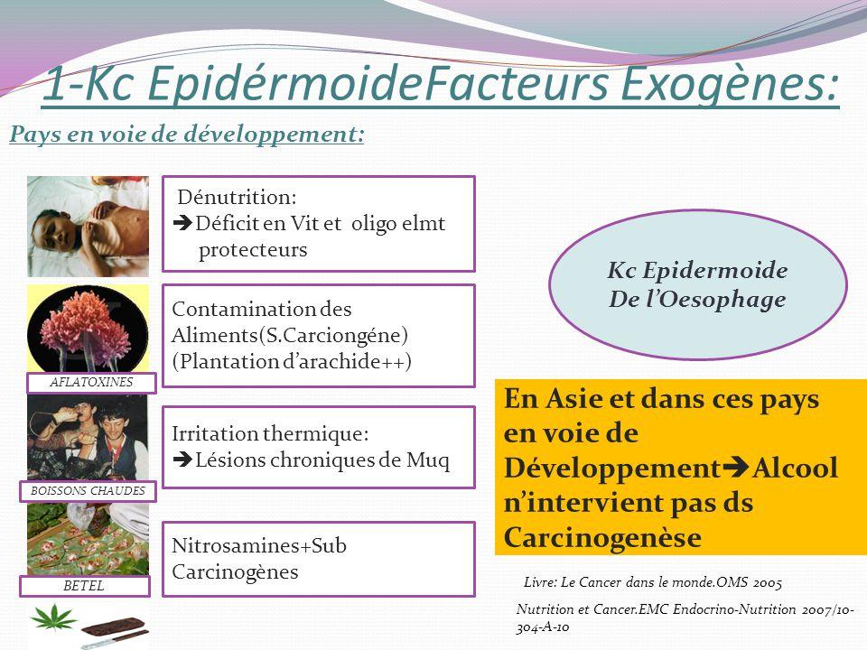 1-Kc EpidérmoideFacteurs Exogènes: