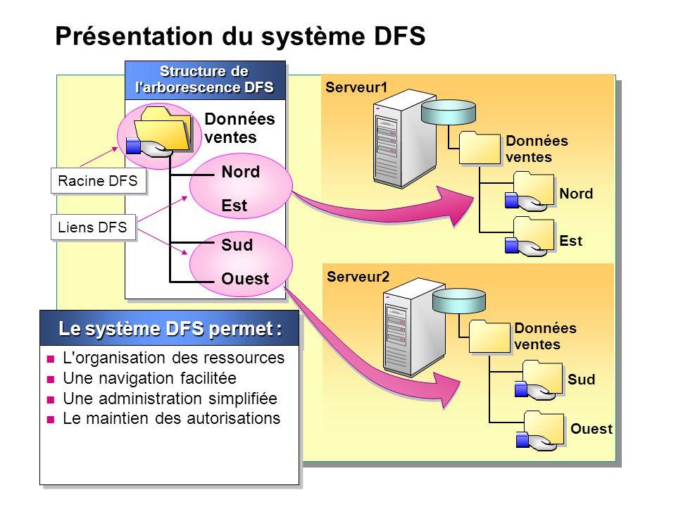 Présentation du système DFS