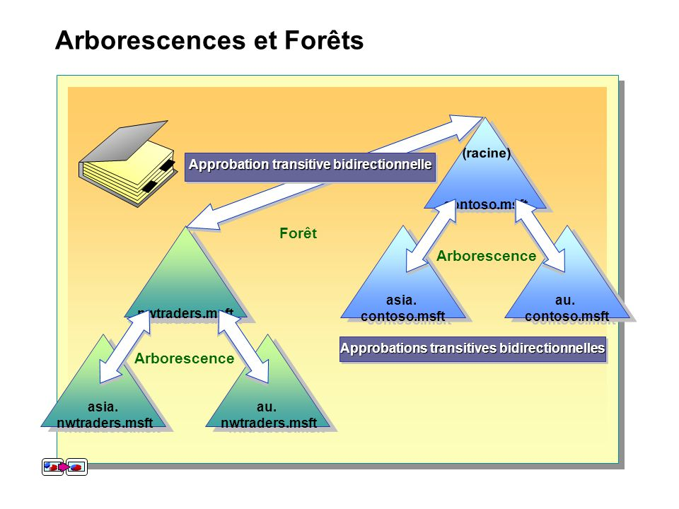 Arborescences et Forêts