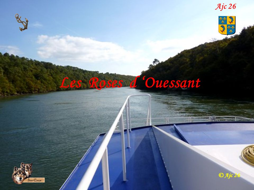 Ajc 26 Les Roses d 'Ouessant © Ajc 26