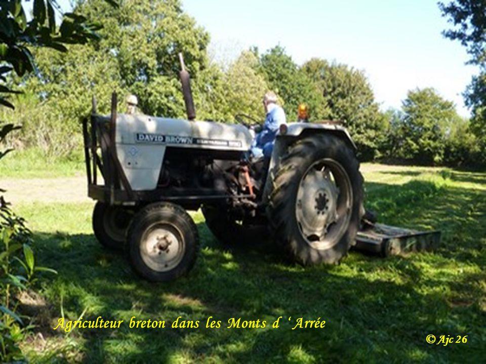 Agriculteur breton dans les Monts d ' Arrée