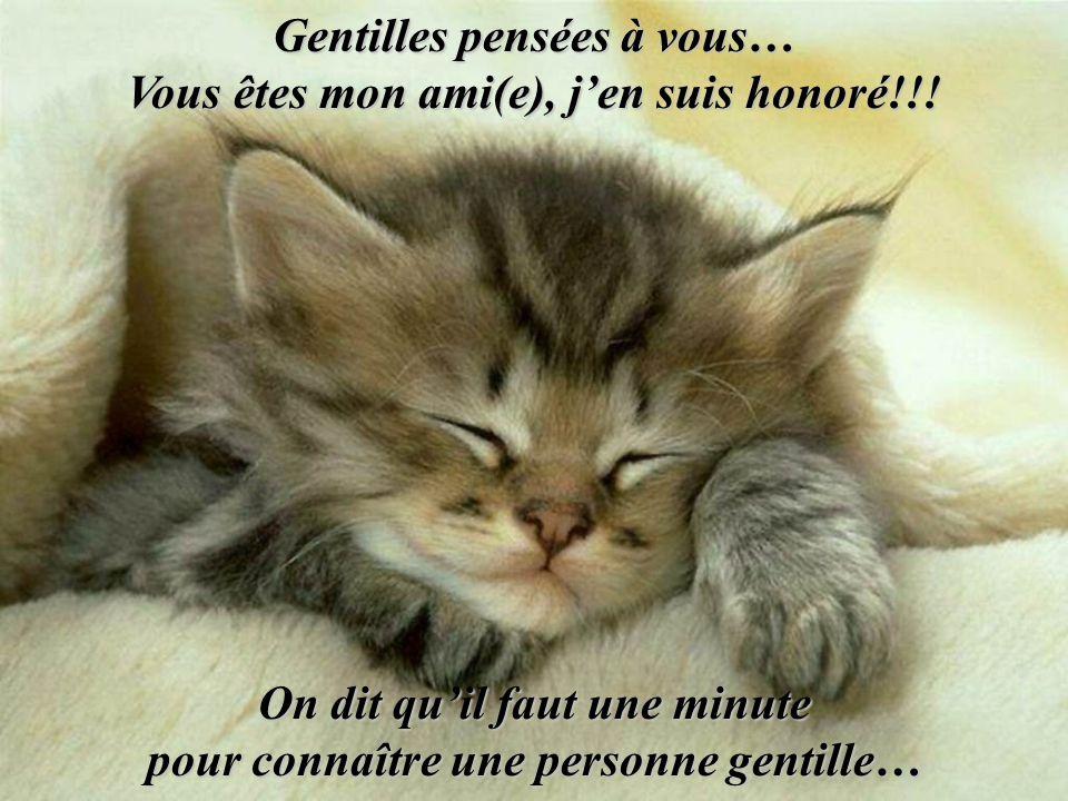 Gentilles pensées à vous… Vous êtes mon ami(e), j'en suis honoré!!!