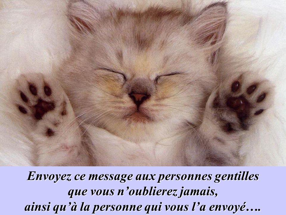 Envoyez ce message aux personnes gentilles