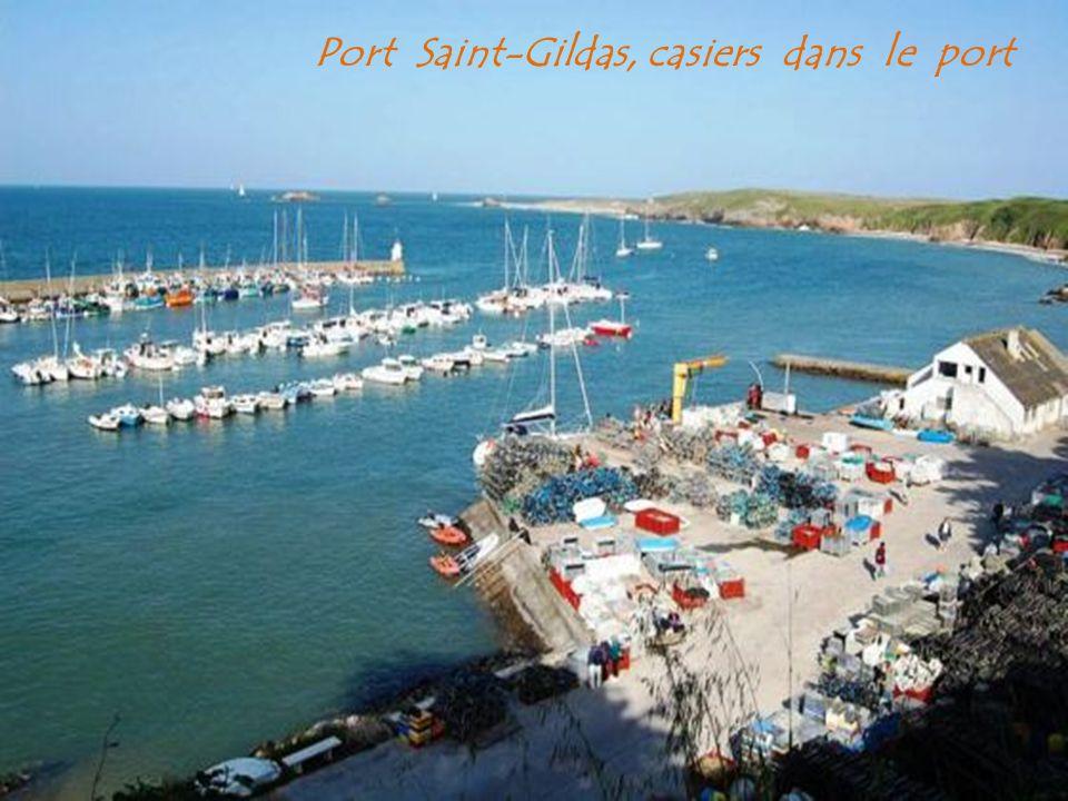 Port Saint-Gildas, casiers dans le port