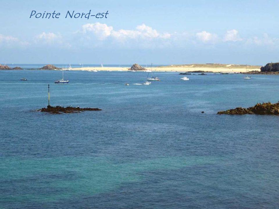 Pointe Nord-est
