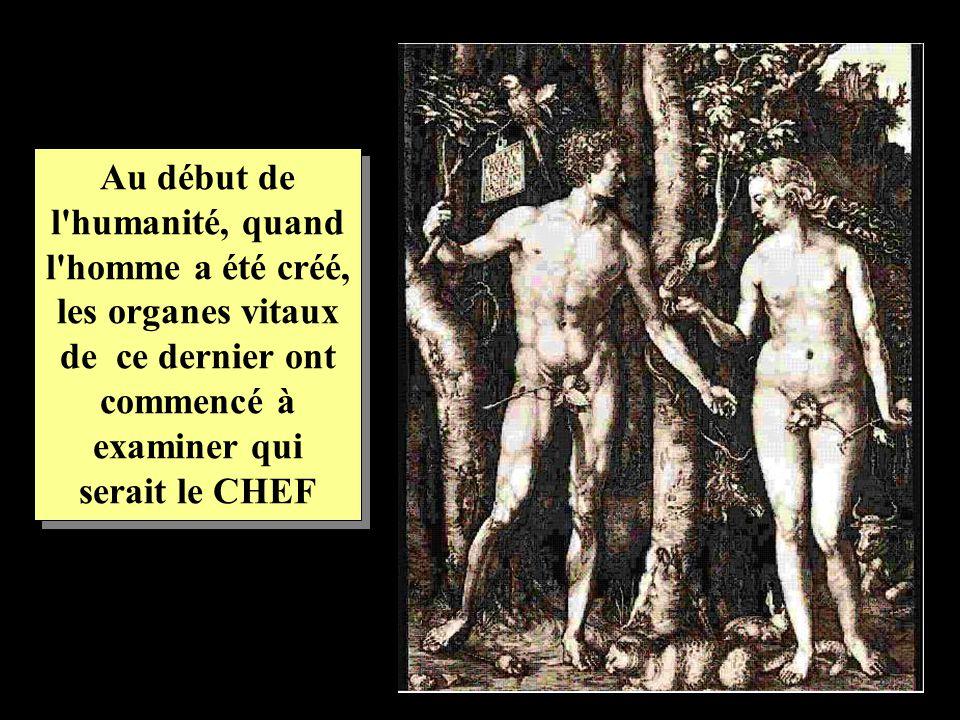 Au début de l humanité, quand l homme a été créé, les organes vitaux de ce dernier ont commencé à examiner qui serait le CHEF