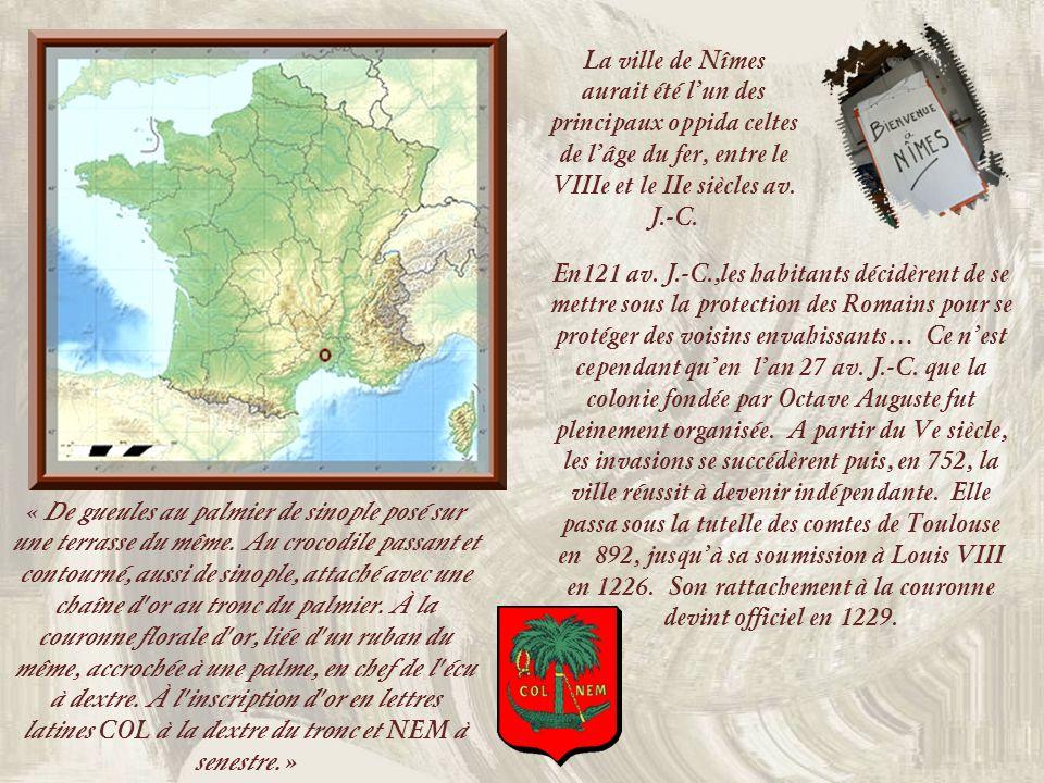 La ville de Nîmes aurait été l'un des principaux oppida celtes de l'âge du fer, entre le VIIIe et le IIe siècles av. J.-C.