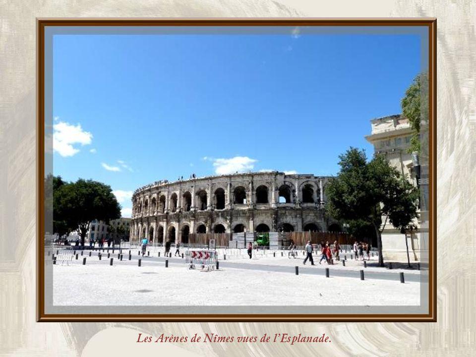 Les Arènes de Nîmes vues de l'Esplanade.