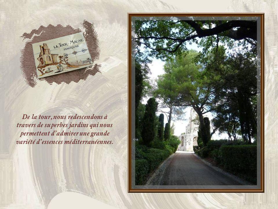 De la tour, nous redescendons à travers de superbes jardins qui nous permettent d'admirer une grande variété d'essences méditerranéennes.
