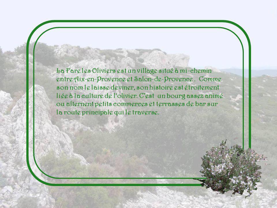La Fare les Oliviers est un village situé à mi-chemin entre Aix-en-Provence et Salon-de-Provence .