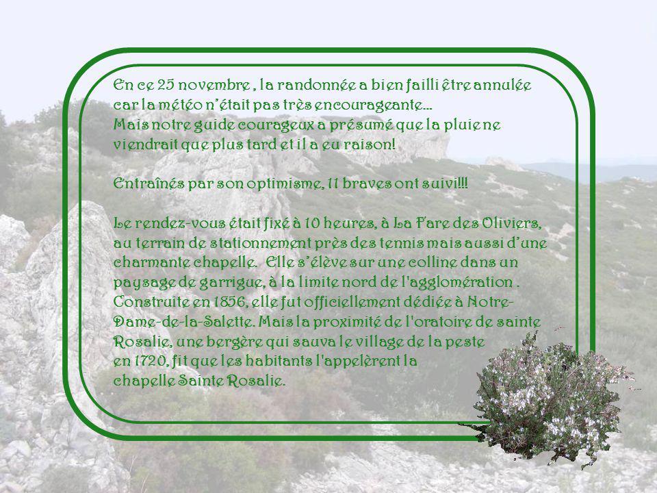 En ce 25 novembre , la randonnée a bien failli être annulée car la météo n'était pas très encourageante…